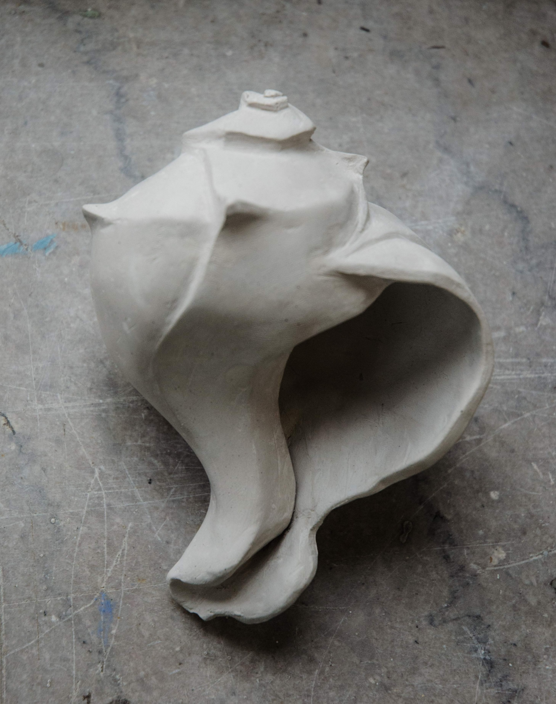 Clay conch shell