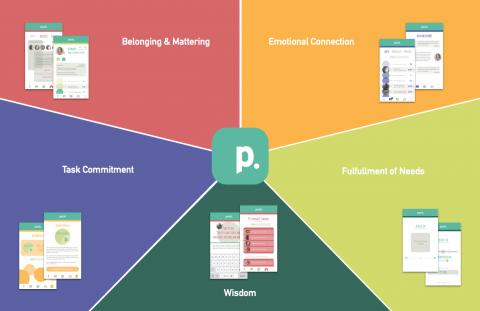 Factors that build Pack's community